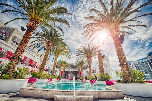 palmy kolem bazénu