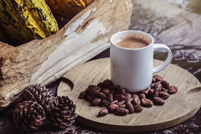 všechny podoby kakaa